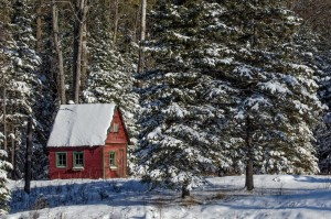 the red cabin cfx